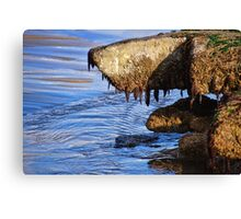 Monster From The Deep? ... Or Just Another Shaggy Dog Story :) Canvas Print
