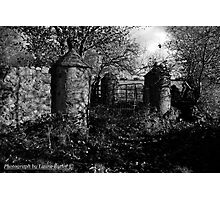 Stone Pillars, Clovervale, Abandoned Country House, County Antrim Photographic Print