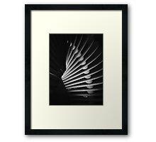 Darwin's Helix Framed Print