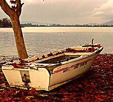 Autumn by thanosgreece