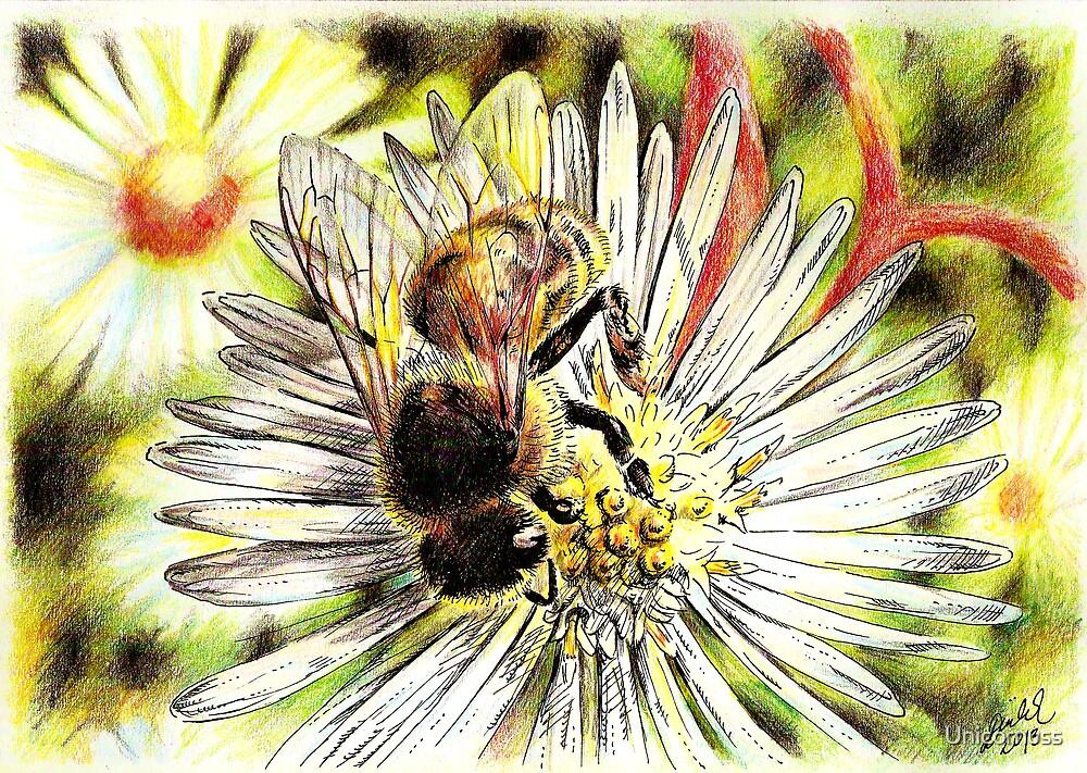 Bee on a daisy by Unicornuss