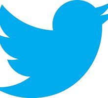 Twitter bird logo by kulistov