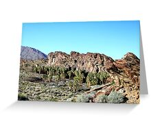 Indian Canyon-Palm Springs Greeting Card