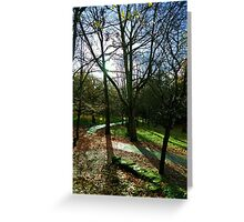 Autumn light in cemetery  Greeting Card