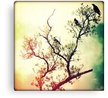 Tree of Crows Canvas Print