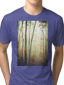 The Woods Are Lovely Dark and Deep Tri-blend T-Shirt