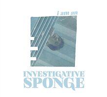 investigative sponge by thebills