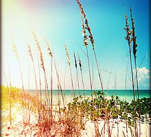 Sanibel Sea Oats I by Chris Andruskiewicz