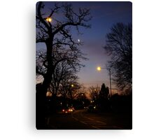 Winter Dawn in the Suburbs of London Canvas Print