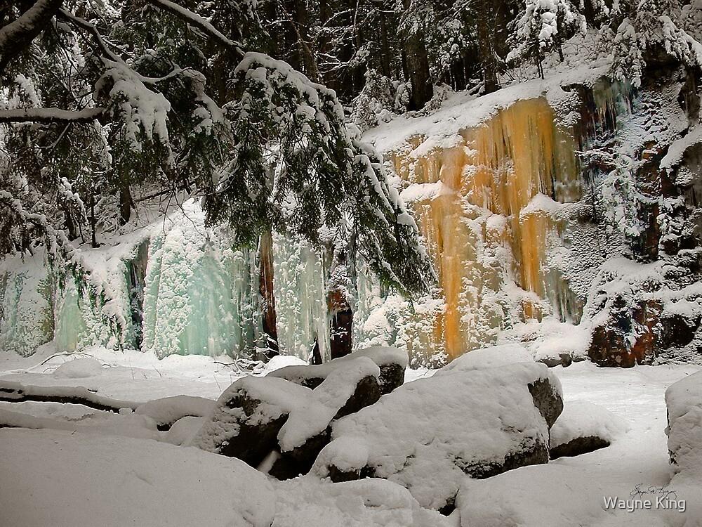 Hemlocks and Icefalls  by Wayne King