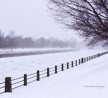 Winter Fog - Rideau Canal by Yannik Hay