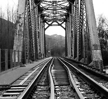 Vedder River Railway Bridge by cielleigh