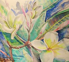 Plumeria flowers by Mr. Lindsey  Stuart Sr.