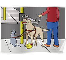 Guide Dog Guide (A Visual Gag) Poster