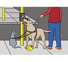 Guide Dog Guide (A Visual Gag) Photographic Print