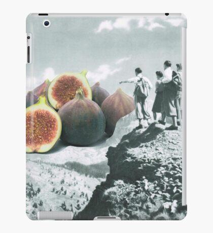 Fig dreams  iPad Case/Skin