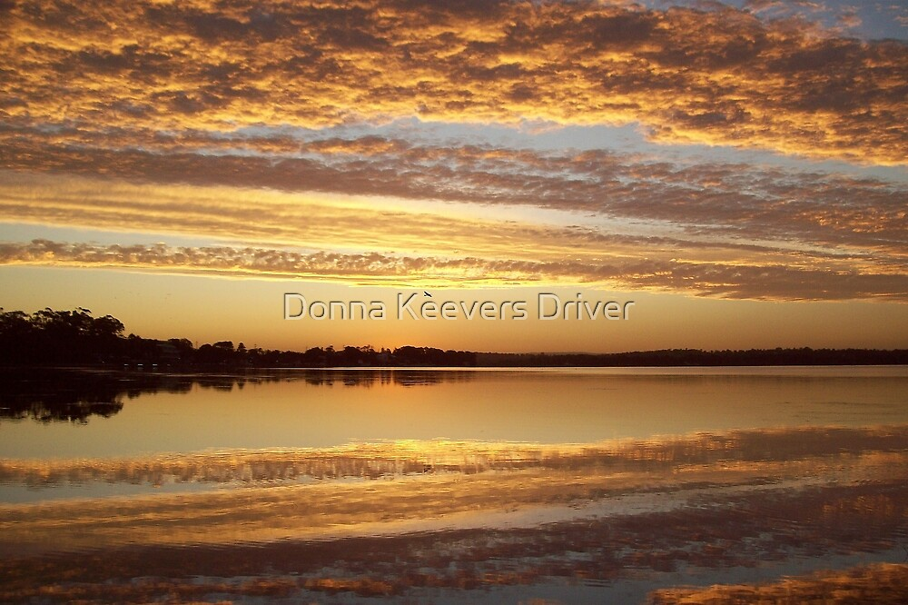 ~ Free Me ~ by Donna Keevers Driver