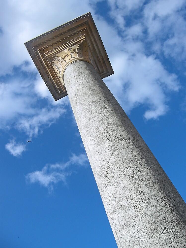 The Column by John  Kapusta