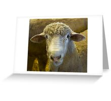 sheeps head Greeting Card