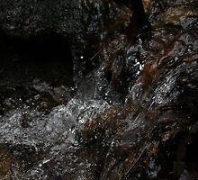 Babbling Brook by Jordan Click
