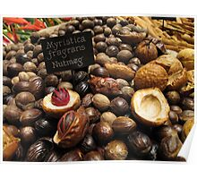 Nutmegs laid out in landscape Poster