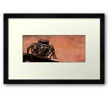 (Servaea vestita) Jumping Spider #7 Framed Print