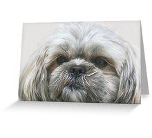A Shaggy Dog Greeting Card