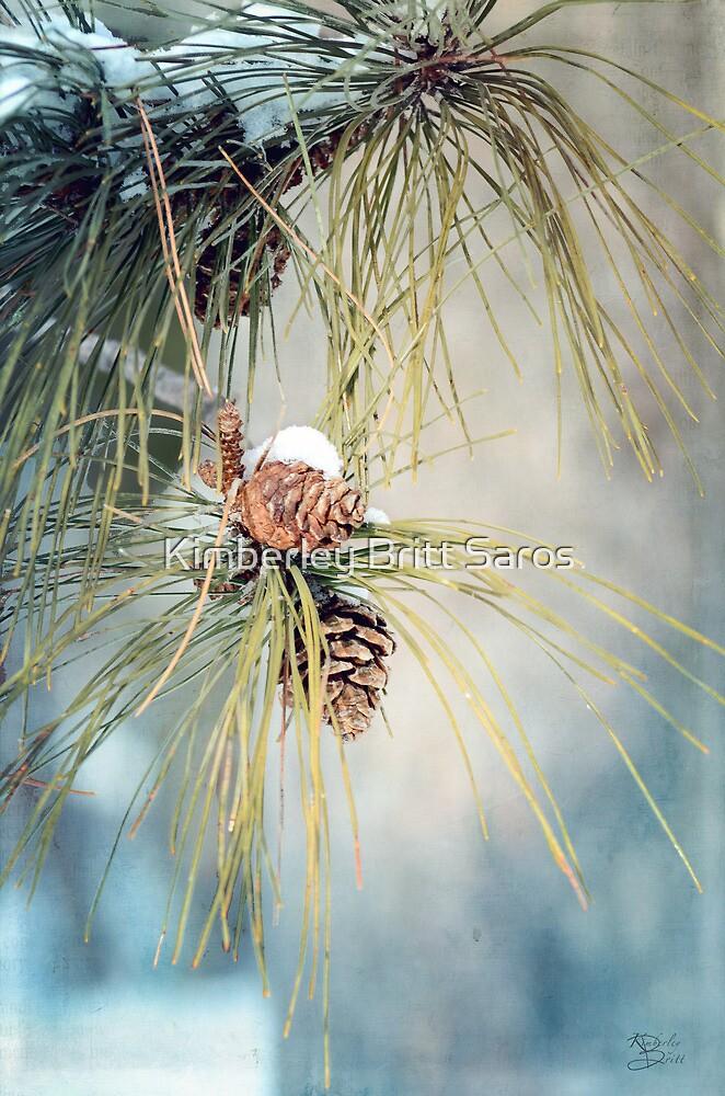 Winter Fresh by KBritt