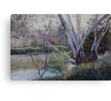 Redgums Canvas Print