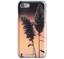 Delicate Sunset Flower II iPhone Case/Skin