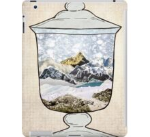 Snow Jar iPad Case/Skin