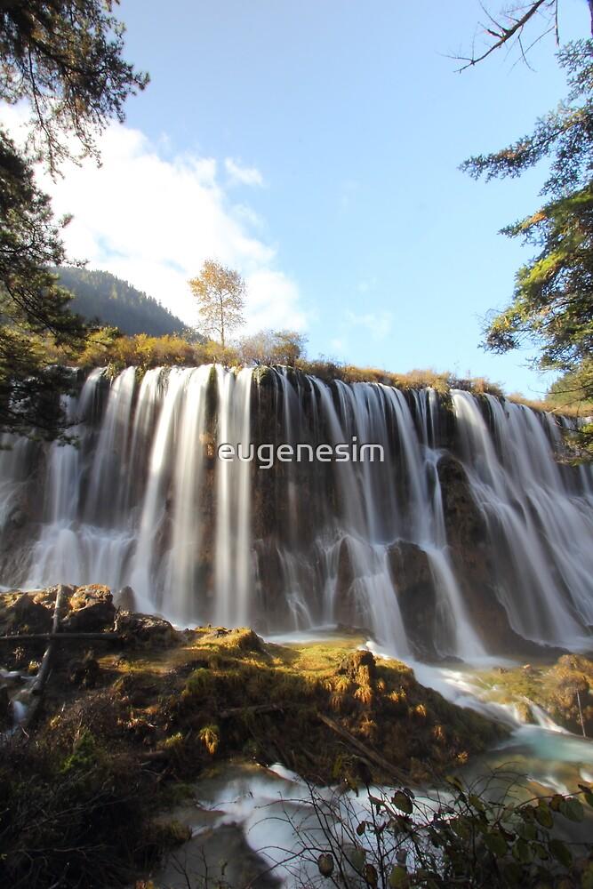 Portrait of waterfall by eugenesim