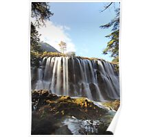 Portrait of waterfall Poster