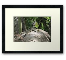 Outlooked Framed Print