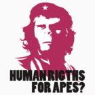 Human rights for apes? by Vojin Stanic