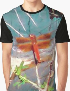 Coppery Dragonfly Graphic T-Shirt