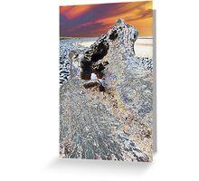 driftwood #2 Greeting Card