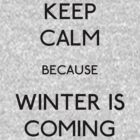 Keep Calm Because Winter Is Coming by rexannakay