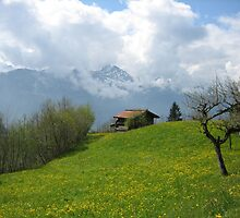 Stunning Switzerland - Spring by M-EK