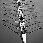 Rowers by seanusmaximus