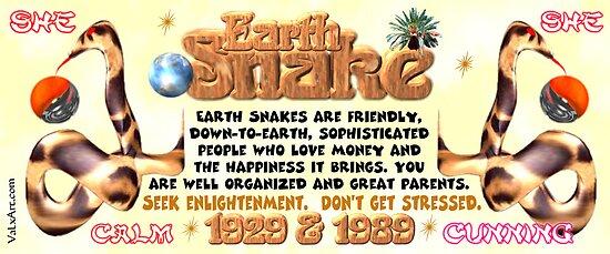 Chinese Zodiac, Earth snake, 1929, 1989, born by Valxart