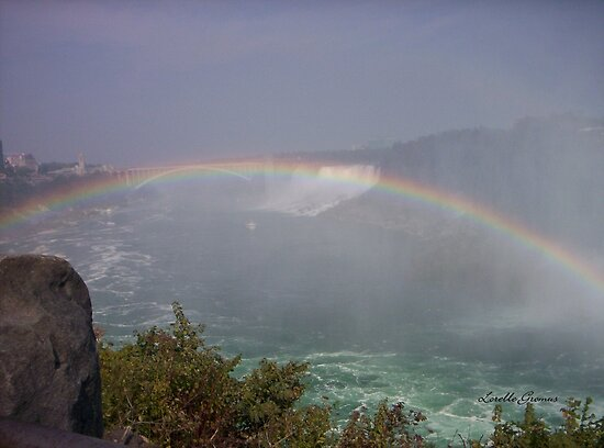 Rainbow by Lorelle Gromus