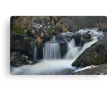 Dartmoor: The River Taw Canvas Print
