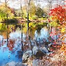 Autumn Lake by Susan Savad