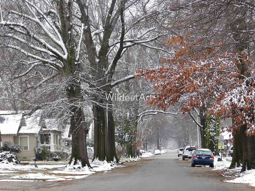 Winter Wonderland...sort of.. by WildestArt