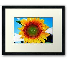 Sunny Daze Framed Print