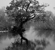 Reflection at the Snowy Lake  by skid