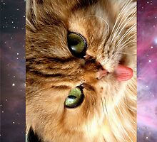 catz n space by WaterMelanie