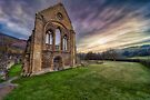 Abbey Ruins by Adrian Evans