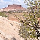 Moab Distance by getfarid